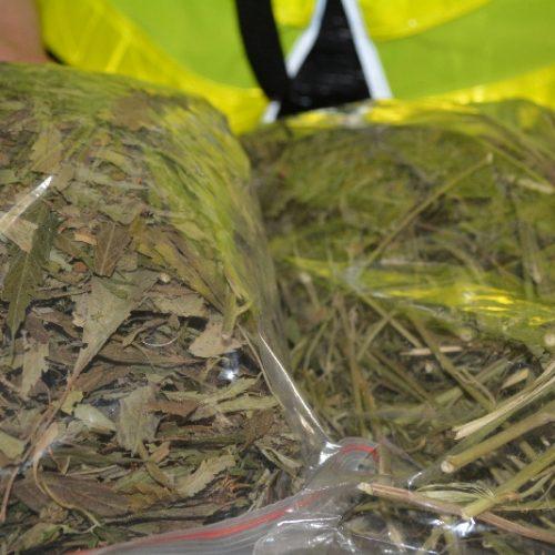 Policjanci z Komisariatu Policji w Zabierzowie ujawnili niemal 2,5 kg suszu marihuany